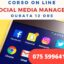 "CORSO ON LINE  ""SOCIAL MEDIA MANAGER"""